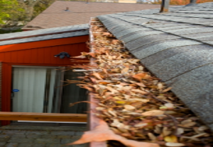 Gutter Maintenance Is Important